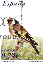 Campo Tiro Aves