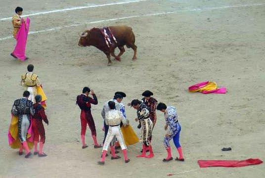trends politics Spain diciembre 2014